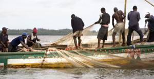 The main occupation of the people of Bonthe district is fishing